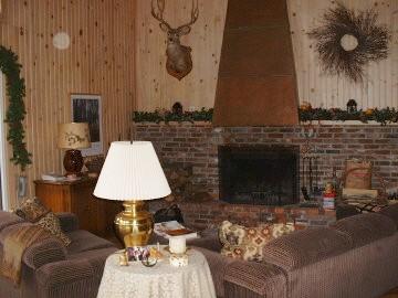 debreelivingroomfireplace